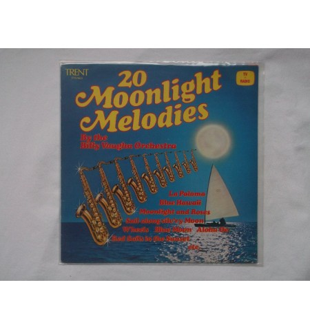 100 Deluxe LP binnen hoezen met kunststof voering